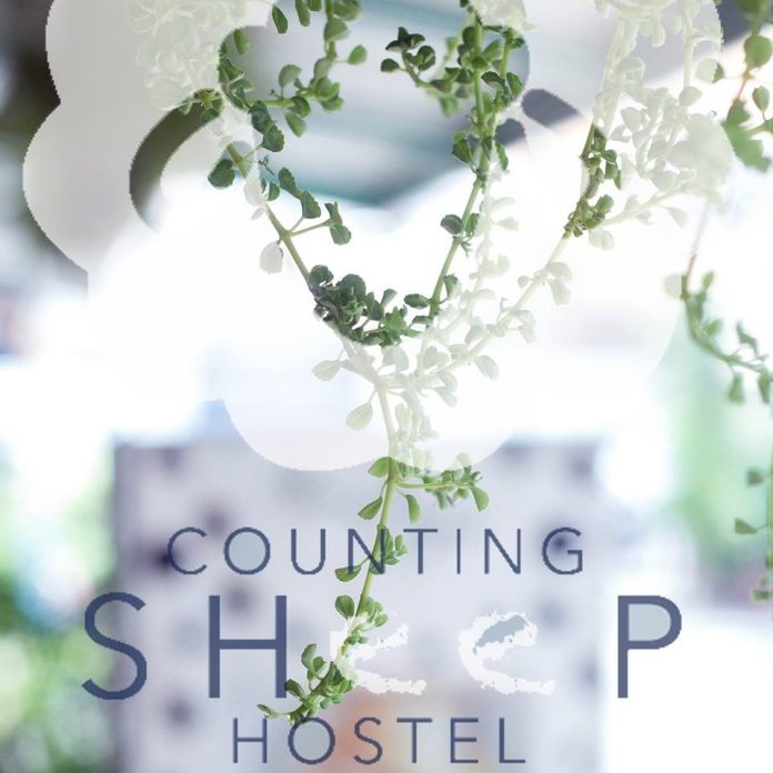 Counting Sheep Hostel